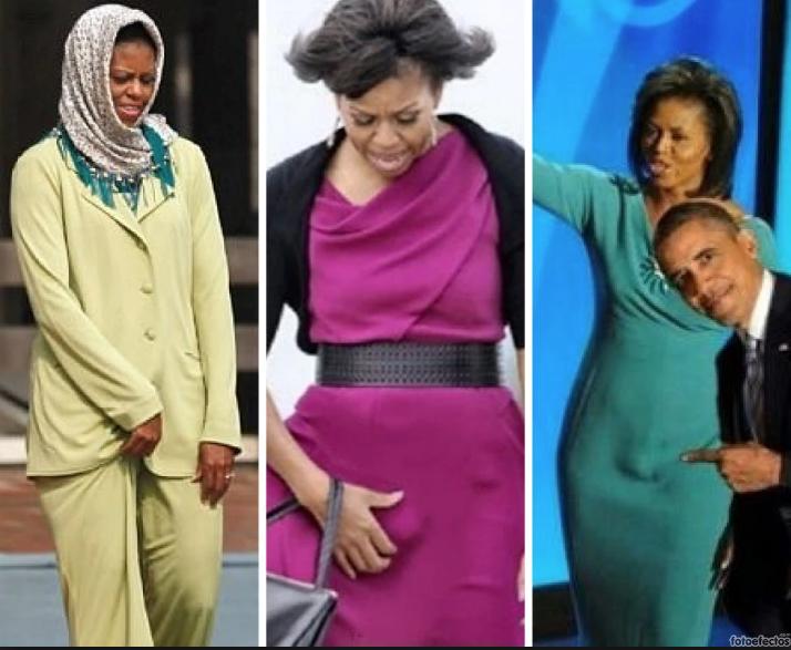 למה מייקל, כלומר מישל אובמה, החליטה עכשיו לדבר על ההפריה החוץ גופית שעברה?